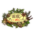herbs and spices icon with condiments around sign vector image vector image