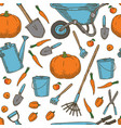 seamless pattern garden tools and vegetables vector image