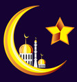 symbol of the islam on black vector image vector image