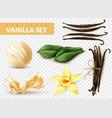 vanilla set realistic transparent vector image vector image