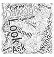 What Does Termite Damage Look Like Word Cloud vector image vector image