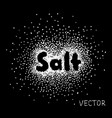 52 salt sprinkled with the word salt vector image vector image