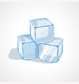 cartoon blue ice cubes vector image