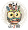 cute cartoon tribal owl with feathers vector image vector image