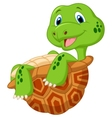 Cute tortoise cartoon vector image vector image