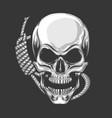 hanged skull vector image vector image