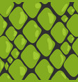 pattern of green snake skin vector image