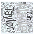Taylor Made Word Cloud Concept vector image vector image