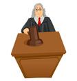 Judge vector image