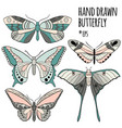 butterfly set collection vector image vector image