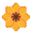colorful yellow and red flower graphic vector image vector image