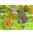 Jungle animals cartoon vector image vector image
