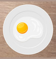plate with fried egg vector image