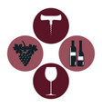 set wine label design isolated vector image