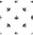 cannabis leaf pattern seamless black vector image vector image