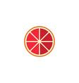flat grapefruit element of vector image