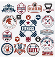 Set of various sports and fitness icons and design vector image vector image
