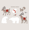 set wild winter animals cute polar bears vector image