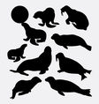 walrus and seals silhouette vector image