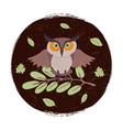 wild cartoon owl on branch grunge card or emblem vector image