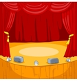 Theater Stage Cartoon vector image