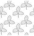 black on white strawberry leaves vector image vector image
