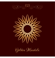Gold Color Sun Mandala over dark brown vector image vector image