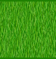 green grass seamless pattern background vector image vector image