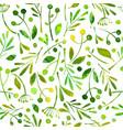 seamless pattern watercolor green herbals vector image vector image