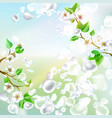 spring background with falling petals vector image vector image