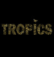 tropics t-shirt print with exotic flowers and vector image vector image