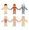 Body anatomy for kids vector image