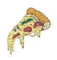 a piece of yummy pizza vintage look hand draw vector image