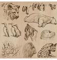 Animals around the World part 21 Hand drawn pack vector image