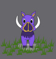 boar on a background boar vector image vector image