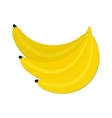 Bunch of Bananas Isolated Healthy Nutrition vector image
