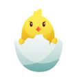 cute little cartoon chick hatched from an egg vector image vector image