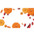 pumpkins and autumn leaves decoration background vector image