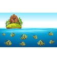Scene with fish swimming under the sea vector image vector image