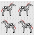 Zebra pattern with flower stripes vector image vector image