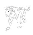 a tiger that goes drawing by vector image vector image