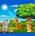 animals are enjoying nature cage vector image vector image