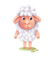 cartoon sheep cute lamb isolated on white vector image
