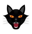 halloween growl black cat head vector image vector image