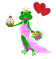 Happy Birthday frog vector image vector image