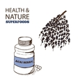 Health and Nature Superfoods Collection vector image vector image