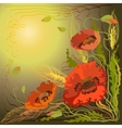 Red and orange poppy flowers and spike lets of vector image vector image