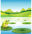 A hungry frog above the waterlily vector image vector image