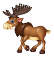 Cartoon brown moose isolated on white background vector image vector image