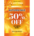 Autumn sale flyer vector image